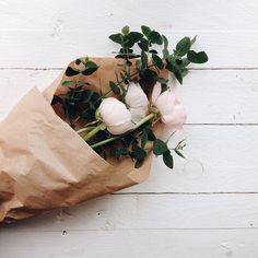 euphoricwxrld:  flureia:  lihliann:  coffeeous:  coffeeous xx  morehere   //  rosy/lush blog