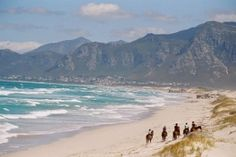 African Horse Company (South Africa) - Riding in the beach Hiking Tours, Local Attractions, African Safari, Horseback Riding, South Africa, Horse Trails, Past, Horses, Adventure