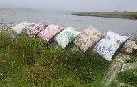 Cushions - online shop