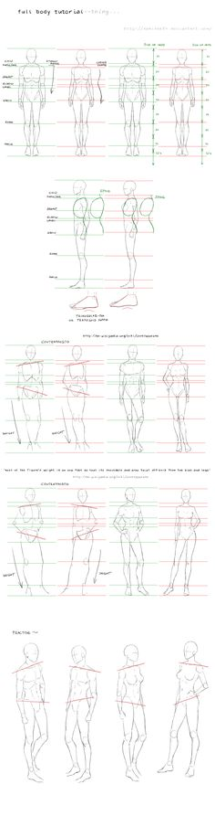 full body tutorial by =nominee84 on deviantART