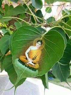बुद्ध Gautama Buddha, Buddha Buddhism, Buddhist Art, Buddha Artwork, Buddha Painting, Buddha Background, Parrot Painting, Buddha Quotes Inspirational, Meditation Art