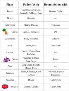 Vegetable Garden Crop Rotation Chart