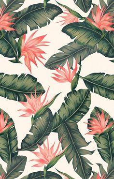 Palm tree flowers Hawaiian aesthetic wallpaper tumblr