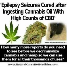 Cannabis oil has thousands of uses