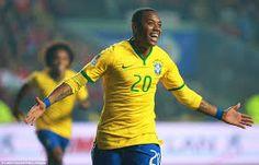 Image result for copa america 2015 brazil fan