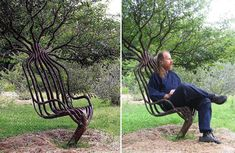 Photo: Artist Peter Cook grew this living garden chair using tree shaping methods, primarily training a living tree through constricting the direction of branch growth. The chair took about eight years to grow. Peter Cook, Garden Chairs, Garden Furniture, Tree Furniture, Tree Chair, Tree Seat, Garden Art, Home And Garden, Garden Living