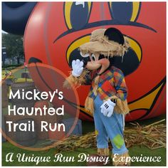 Mickey's Happy Haunted 5K, Costume reveal, and the Cutest Runner EVER!