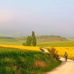 Camino de Santiago de Compostela - Spain