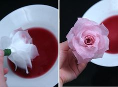 Wunderschöne Rosen aus Kaffeefiltern basteln - Anleitung-dekoking-com-7
