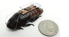Biobot in soccorso all'uomo   Hi-TecnoBlog.it