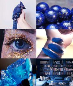 blue jay | Tumblr