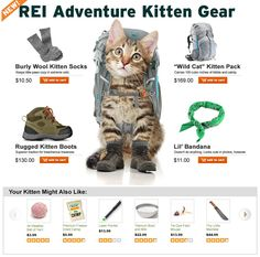 REI Finally Introduces Gear for the Outdoorsy Cat