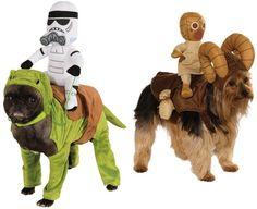 Disfraces de perro star wars
