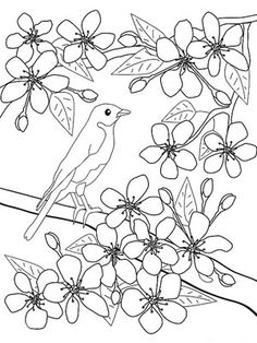 printable spring coloring pages - Spring Pictures To Color