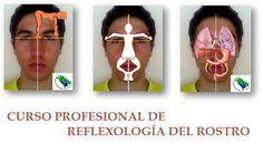 REFLEXOLOGIA: NATUROPATIA MANUAL - Google Search