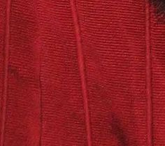 ~Please also have a look at my other Star Wars costume reproductions! ~ Navigation menu for this costume: Analysis of the costume – Making the headdress – Making the gown Queen Amidala … Rainha Amidala, Queen Amidala Costume, Theme Star Wars, Throne Room, Star Wars Costumes, Royal Red, Headdress, Gown, Dressing