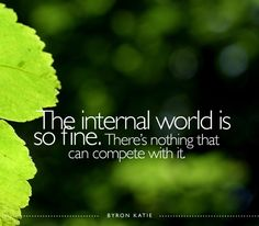 The internal world is so fine. There's nothing that can compete with it. - Byron Katie