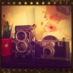 rolleiflex, vintage camera, iphonegraphy