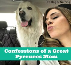 From pulling white dog fur out of a wine glass to accepting it as an accessory, here are some of my confessions as a Great Pyrenees mom.