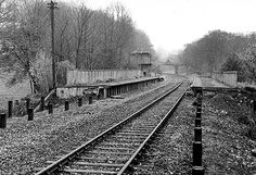 Disused Stations: Lordship Lane Station Old Train Station, Train Stations, Oak Forest, Forest Hill, London History, Local History, South London, Old London, Disused Stations