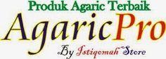 http://www.agaric-pro.com/2014/09/harga-obat-herbal-agaricpro-termurah.html Harga Obat Herbal Agaricpro Termurah