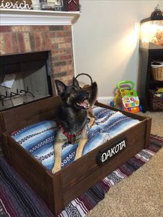 Dog bed pallet project extra large dog (100+ lbs)