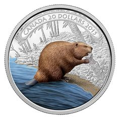 2015 20 Fine Silver Coin 1 oz Beaver at Work 15 RCM Royal Canadian Mint Calgary, Canadian Things, O Canada, Canada Post, Old Money, Canadian History, Proof Coins, Dollar Coin, World Coins