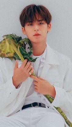 Woozi, Jeonghan, The8, Vernon, Mingyu Seventeen, Seventeen Debut, Hip Hop, Kim Min Gyu, Seventeen Wallpapers