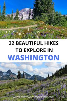 Looking for a hike to do in Washington state? Here is a guide to 22 Washington hikes to choose from for your next adventure. Washington hikes   hiking in Washington   Washington summer hiking Usa Travel Guide, Travel Usa, Travel Tips, Cool Places To Visit, Places To Travel, Travel Destinations, Hiking Guide, Hiking Trails, Visit Usa