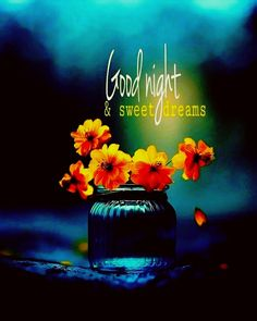 Good Night Greetings, Good Night Wishes, Good Night Quotes, Good Night Image, Good Morning Good Night, Blessed Night, Magical Images, Days And Months, Sweet T