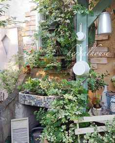 Pin by Herbalworld on ハーバルハウスの庭 Garden Structures, Garden Paths, Garden Junk, Home And Garden, Landscape Design, Garden Design, Small Outdoor Spaces, Small Space Gardening, Enchanted Garden