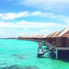 Maldives Luxury Resorts - Adhaaran Prestige Vadoo  #bmrtg #Maldives #vadhoo #indianocean #AsiaTravel #WorldTravelGuide #马尔代夫 #SBN2RT #warrenjc #sunnysideoflife #maldivity #travel #traveling #vacation #dive #surfing #adventureculture #instagood #india #holiday #lagoon #beach #instapassport #instatraveling #mytravelgram #travelgram #igtravel #CrystalClearWater #LonelyPlant #adventure