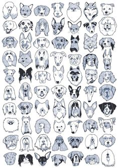 DOG_BREEDS_POSTER_b1.jpg (1131×1600) - Tap the pin for the most adorable pawtastic fur baby apparel! You'll love the dog clothes and cat clothes! <3
