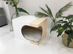 LUNARBOX FOR DOG - 스튜디오마스 Pet Station, Cat Tent, Puppy House, Cat Room, Cat Condo, Pet Furniture, Buy A Cat, Dog Houses, Dog Bed