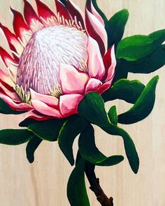 Excited to share the latest addition to my #etsy shop: King Protea on a natural wood. Big flower. Acrylic painting. Home decor. https://etsy.me/2IiD6P3 #art #painting #pink #beige #housewarming #protea #flower #acrilicpainting #plywood