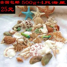 500g + 4 starfish decoration package shipping conch shells floor window props children's toys creative gifts - Taobao