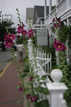 Provincetown is beautiful in the spring time.