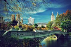 Central Park, New York City-- fantastic place to explore, indulge, sight-see, and people-watch. Can't wait to take Grace around Christmas time.