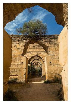 Pferdestall in Meknes