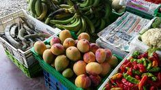Market in David