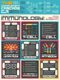 Basic Guide to Immunology Poster – NerdcoreMedical