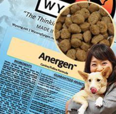 生のたべものに近づけた健康的なドッグフード|愛犬思いのドッグフード-Dog Food-