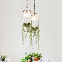 Hanging plant vase pendant light in brass hanging light fixtures, hanging. Lamp Design, Hanging Light Fixtures, Hanging Glass Vase, Planter Design, Hanging Plants Diy, Hanging Plants, Hanging Lights, Plant Vase, Plant Lighting