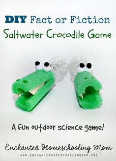 Are you ready to make your very own storytelling game to learn about saltwater crocodiles that tests your fact or fiction skills? This hands-on learning lesson for the book is perfect for children of any age to help teach them facts about saltwater crocodiles with a fun hands-on game that is sure to be not only fun, but a blast to learn with too. Come get your book themed hands-on learning fun and FREE printable today.
