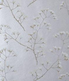 blossom   jocelyn warner