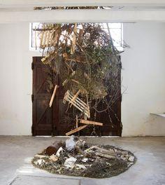 Inside the Forest - Mark Baugh-Sasaki