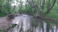 PA Monocacy Creek, Meadow Park