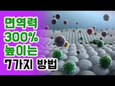 '면역력' 300% 높이는 7가지 방법 - YouTube