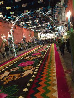 Tapetes de Aserrin y Arena Huamantla Tlaxcala I Saw, Diy And Crafts, Street, Farmhouse Rugs, Saint George, World, Mandalas, Scenery, Walkway