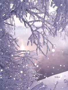 Sugar Plum: #Sugar #Plum ~ Snowy branches.